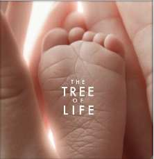 The Tree Of Life – Movies To Watch Tonight Review